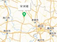 京山宋河镇 低价转让公司厂房土地设备