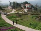 农村公路管理平台信息化公开化系统化