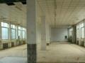 金凤创业园A区 厂房 1100平米