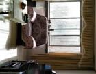 鄯善 鄯善县工商局家属院 3室 2厅 100平米 整租