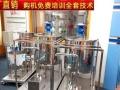 多功能洗衣液生产设备 一机多用投资金额 1-5万元