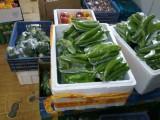 郑州蔬菜年货箱供应礼品