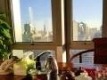 双采光 全套家具 正对电梯朗琴国际大厦278平精装