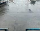 洛阳市天子驾校优惠报名七大驾校就近练车还送体检