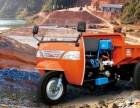 上海专业出租下地下室小铲车,自卸三轮车