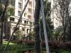 杭州房产3室2厅-300万元