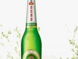 江苏青岛啤酒 江苏青岛啤酒诚邀加盟