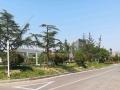 大学城 淮海南路工学院附近 商业街卖场 1000平米