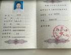 深圳 成人高考 远程网络教育 轻松拿证