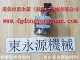 LGN-25冲床快速换模系统,惠州扬力冲床过载泵 选东永源放