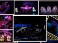 湛江大型活动 龙狮演出、舞龙舞狮表演开业庆典