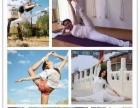 北京梵语鸿林教学总监来洛阳分校培训瑜伽教练