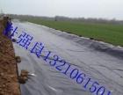 山东HDPE土工膜_养殖膜防渗膜_0.35/0.5