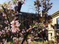 枫林九溪+高层河景现房+全运会旁+地铁口+阳光社区+舒适养老