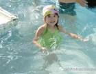 夏天游泳哪里去室内恒温泳池免费游