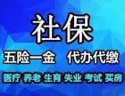 郑州本地社保代缴 代理记账 正规高效 不成功不收费