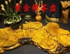 黄金樟茶盘/黄金樟茶盘价格/黄金樟根雕茶几茶台