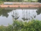 沙河垇下村(苗甫,鱼塘,养殖棚)3000平米