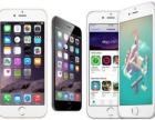 专修苹果iphone6,6plus,7,6s换屏