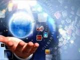 定制型网站搭建-小程序APP开发-全网推广引流