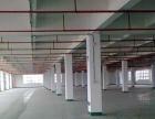 轻工食品园一楼1000平二楼2000平出租