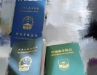 北京市游泳培训美女私教一对一授课蛙泳自由泳蝶泳等