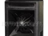 PK-8215远程专业音箱 户外音箱 专