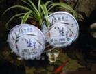 龙润普洱茶招商加盟