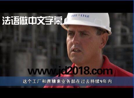 视频听译上海骄点字幕翻译小语种视频加字幕后期制作
