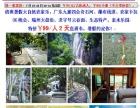 广东九寨四会奇石河、瀑布栈道 2天游