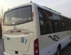 少林客车 2013年上牌-少林少林客车 2013年上牌 白