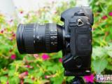 回收佳能单反相机 回收1DX 5D2 5D3单反相机