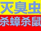供应深圳罗湖区东门/黄贝岭/莲塘片区除猫等家禽的异味