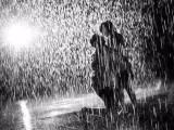 雨中精灵 雨随你而停而动 新一代科技雨屋设备展览出租出售