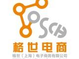 上海格世电商代运营
