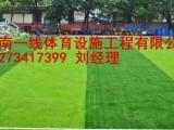 湘西泸溪县人造草皮材料厂家报价湖南一线体育