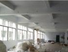 南区新出一楼1000平方带装修厂房招租
