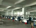 东环路 出租二楼精装修厂房 1100平方米