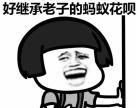 南宁咕咕狗你是想笑死我,好继承我的花呗吗?!