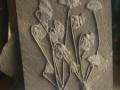 神奇的大自然,天然海百合化石 贵州龙化石