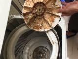 清洗家电加盟,空调清洗,洗衣机清洗,油烟机清洗