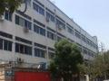 梧田南村纯仓库出租,1楼800平方,车道可以进挂车