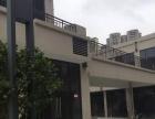 双电梯口铺面 滨江商业街 高质量招商团队 租金稳定