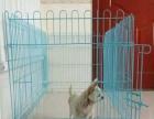 99成新的狗猫兔子笼 , 淘宝网买成50块钱价格网上可查的