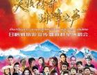 珠峰旅游节开幕式门票