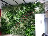河南省哪里有卖得好的花卉租摆公司,如何选择花卉租摆公司配件