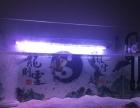 金晶超白鱼缸便宜出售