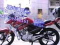 125太子摩托便宜卖