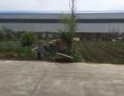 泰安路中段 厂房 1000平米 独院 价格面议