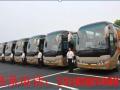 专业提供5-55座班车 会议用车 优惠中